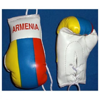 Mini Boxing Gloves - Armenia