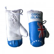 Mini Boxing Gloves - Cook Island