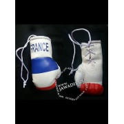 Mini Boxing Gloves - France