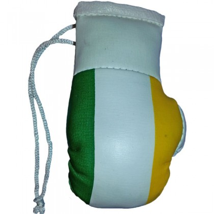 Mini Boxing Gloves - Ireland