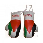 Mini Boxing Gloves - Palestine