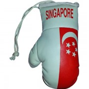 Mini Boxing Gloves - Singapore