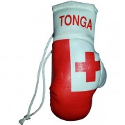 Mini Boxing Gloves - Tonga