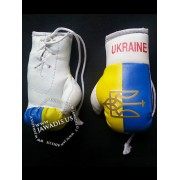 Mini Boxing Gloves - Ukraine