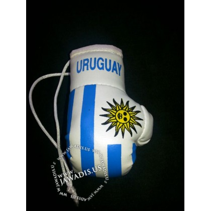 Mini Boxing Gloves - Uruguay
