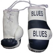 Mini Boxing Gloves - Blues