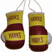 Mini Boxing Gloves - Hawks