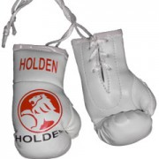 Mini Boxing Gloves - Holden