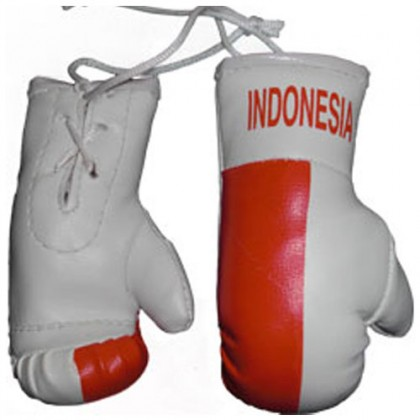 Mini Boxing Gloves - Indonesia