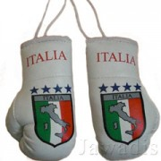 Mini Boxing Gloves - Italia Map 4 Blue Stars