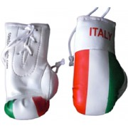 Mini Boxing Gloves - Italy Flag