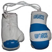 Mini Boxing Gloves - Kangaroos