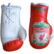 Mini Boxing Gloves - Liverpool - Red Wrist