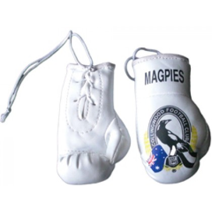 Mini Boxing Gloves - Black Billed Magpies