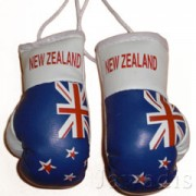 Mini Boxing Gloves - New Zealand Blue Flag