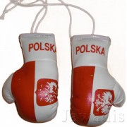 Mini Boxing Gloves - Polska