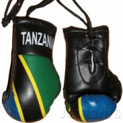 Mini Boxing Gloves - Tanzania