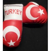 Mini Boxing Gloves - Turkey - Red