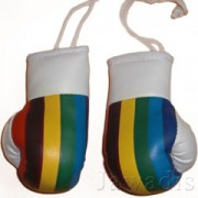 Mini Boxing Gloves - Union Cycliste Internationale