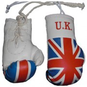 Mini Boxing Gloves - UK