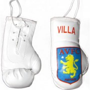 Mini Boxing Gloves - Villa